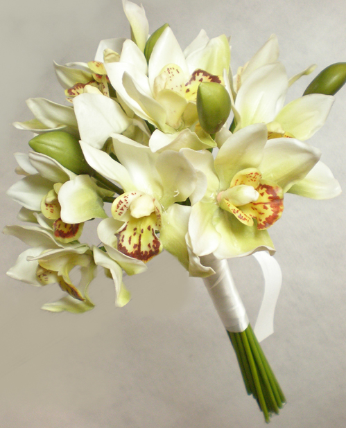 Wedding Bouquet Orchid Ideas : Blossoms floral artistry beautiful blooms and